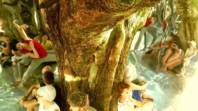 persone sotto albero