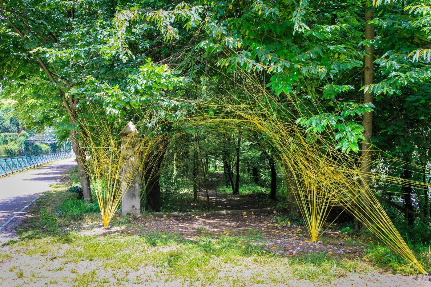 giardino con fili gialli